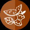 logo-organico-umido-augusta-si-differenzia