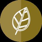 logo-sfalci-e-potature-augusta-si-differenzia